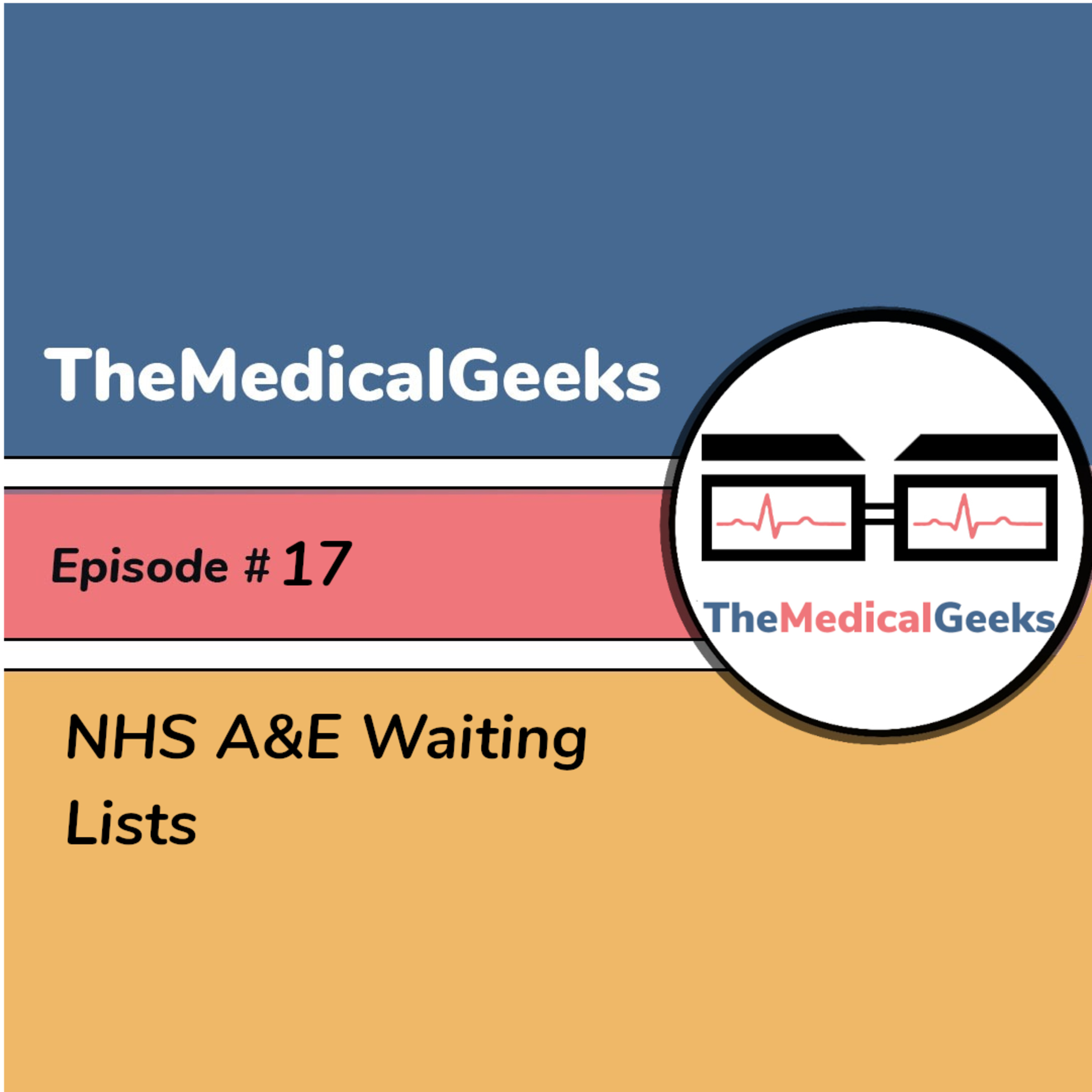 #17 Episode 17: NHS A&E Waiting Times