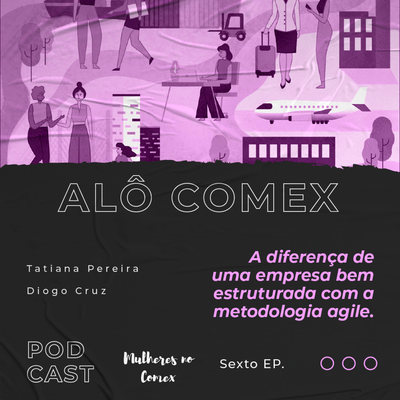 Alô COMEX - Ep. 6 - A diferença de uma empresa bem estruturada com a metodologia Agile