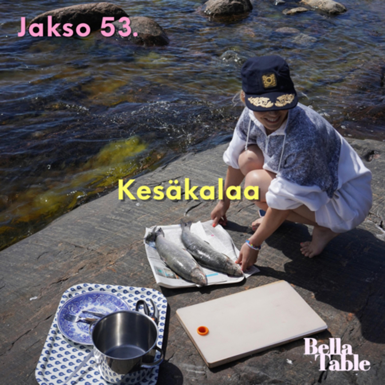 53. Kesäkalaa