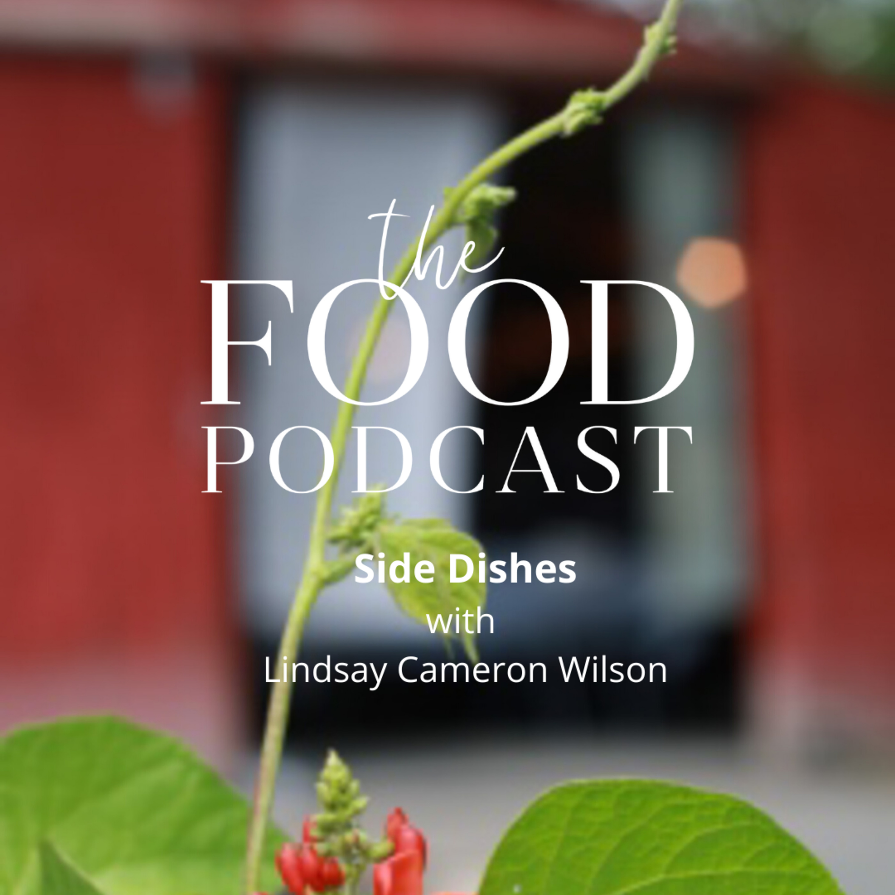 Side Dishes with Lindsay Cameron Wilson - Live from The Atlantic Podcast Summit