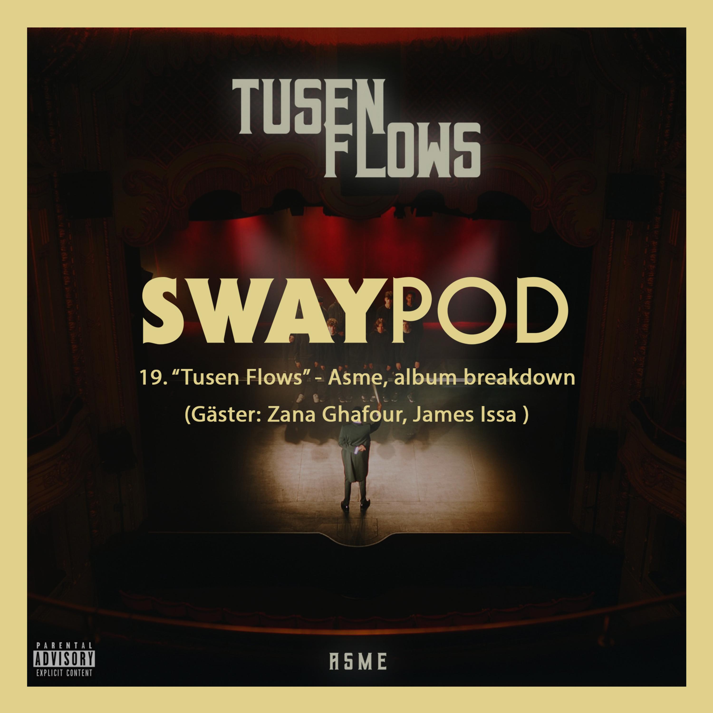 "19. ""Tusen Flows"" - Asme, Album breakdown"