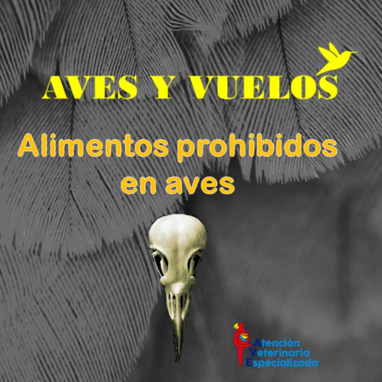 ALIMENTOS PROHIBIDOS EN AVES