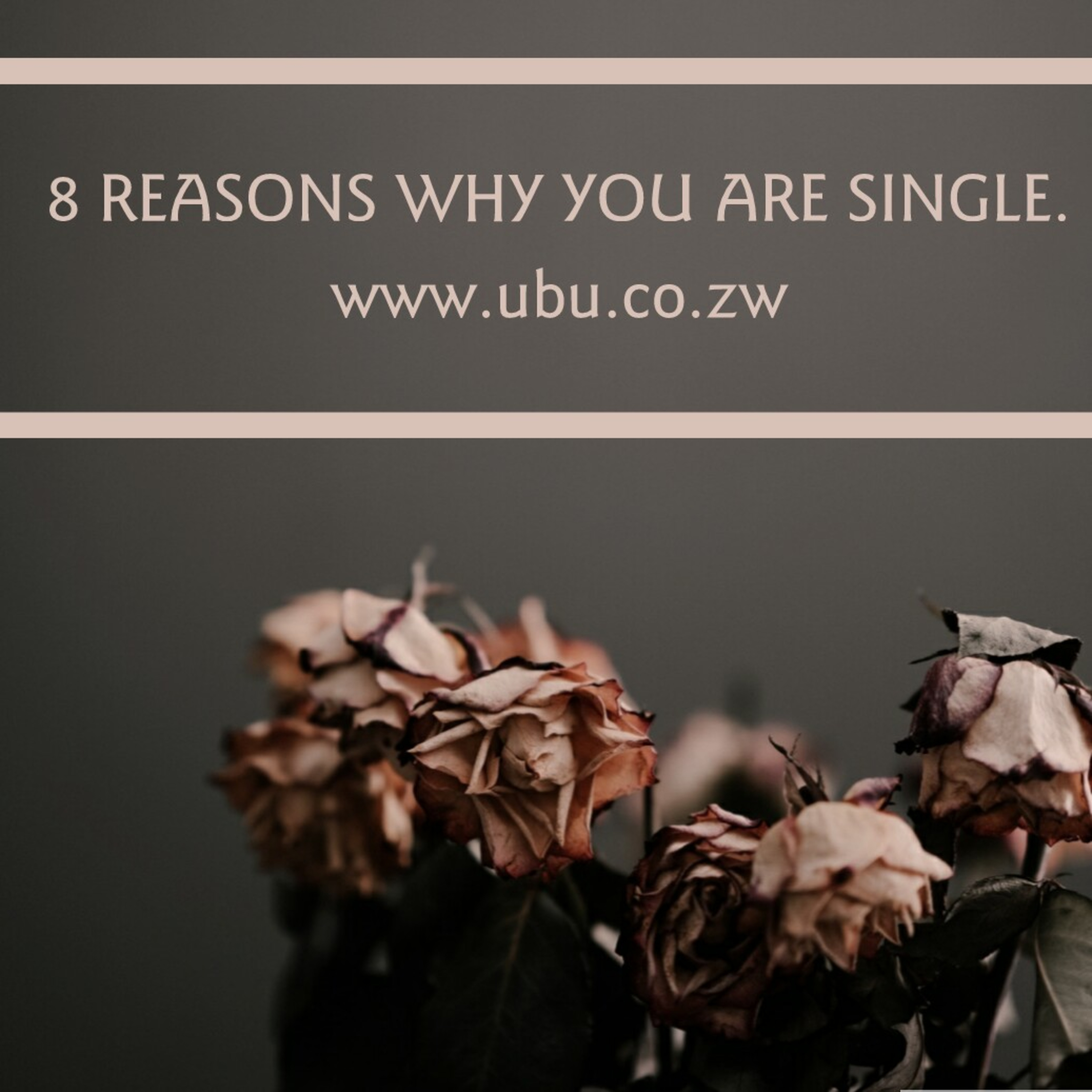 8 REASONS WHY YOU ARE SINGLE