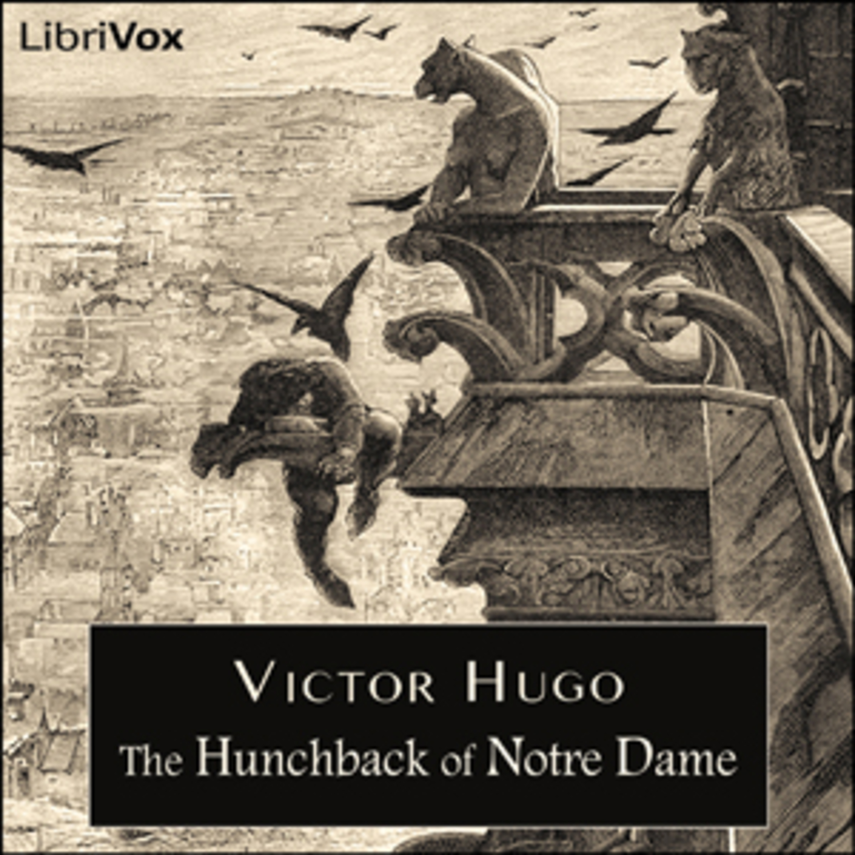 The Hunchback of Notre Dame - Victor Hugo - Book 2 - 1-3 - From Charybdis to Scylia - Place de Grave - Kisses for Blows