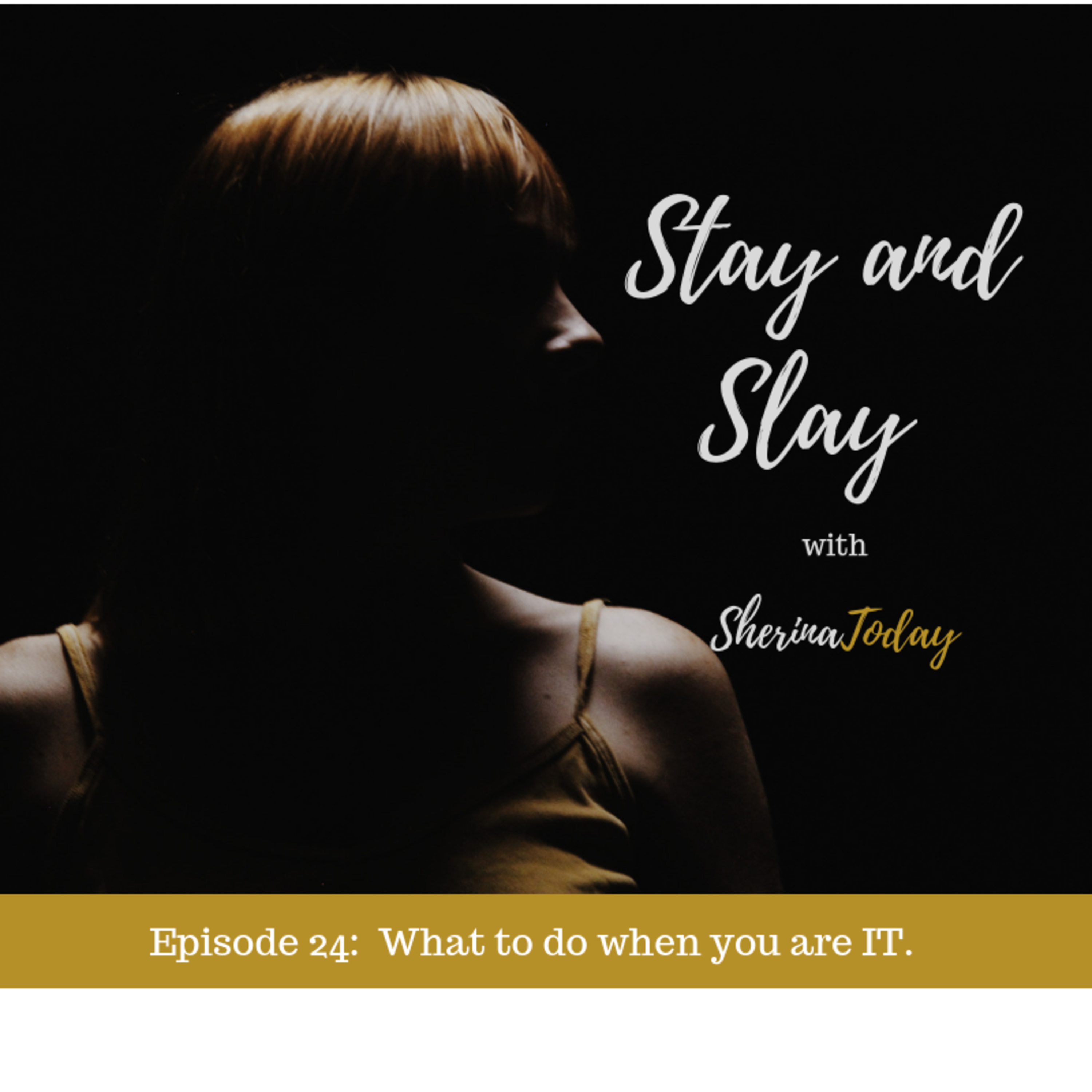 Episode 24 - What to do when you are IT.