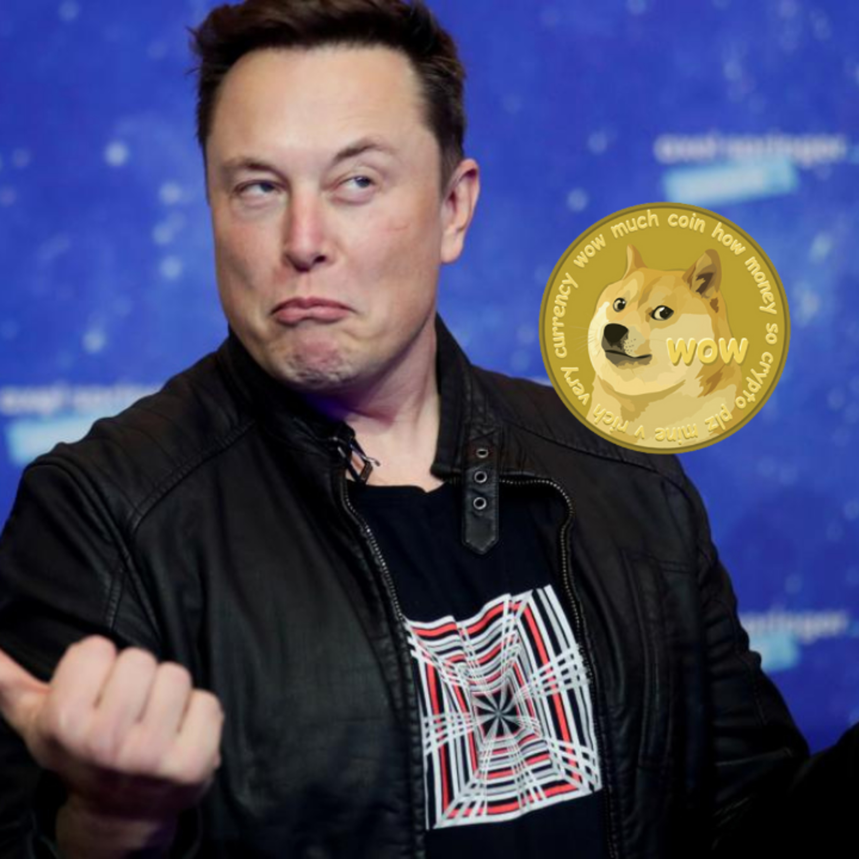 Elon on SNL: World's Biggest Influencer