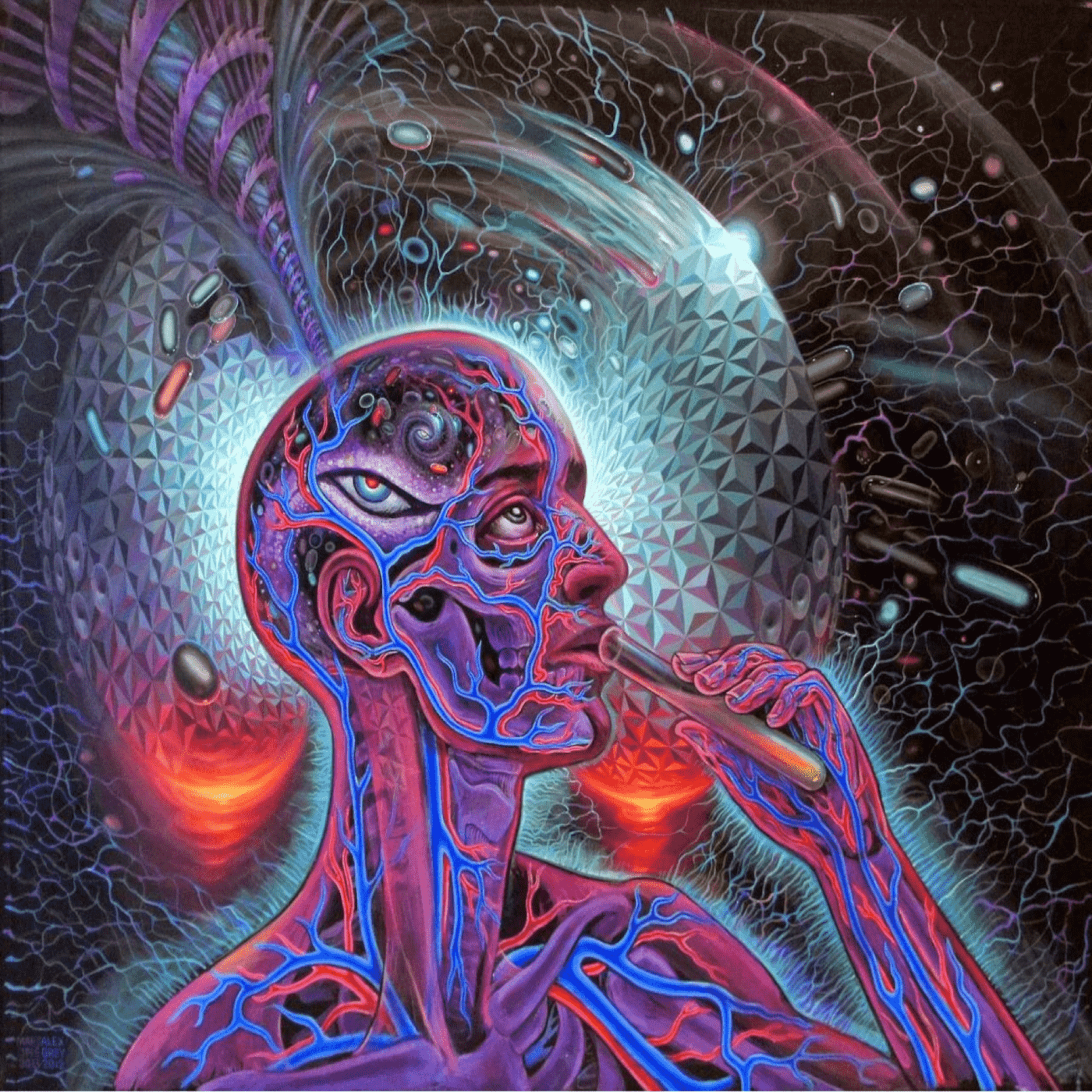 Psychedelic Trips