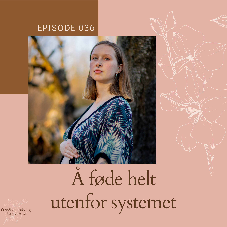 036 Fødselshistorie: Å føde helt utenfor systemet