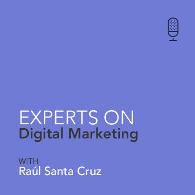 Raúl Santa Cruz - Expert On Digital Marketing - Who are your clients? (ES)