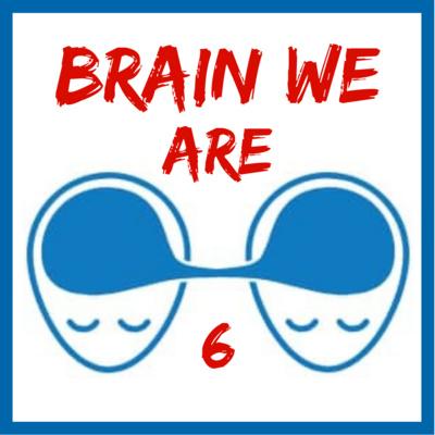 6: Co všechno se nám děje v podvědomí? Co je to Flow? Percepční Okna.