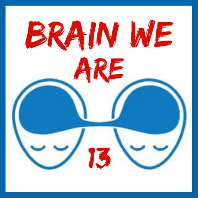 13: Vesmíry a Mozky