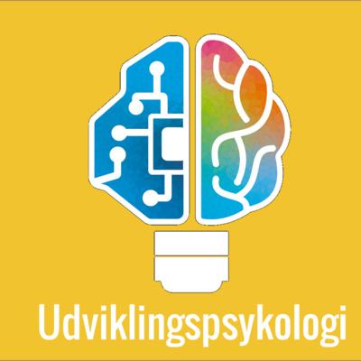 42: Børns kognitive udvikling