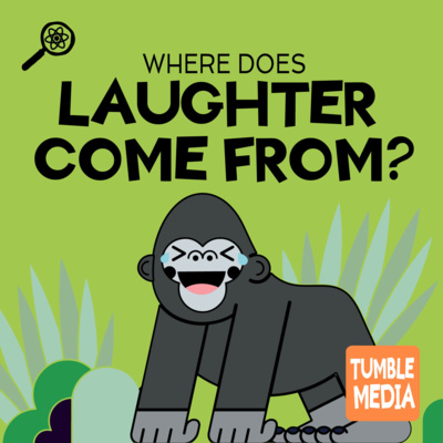 Where Does Laughter Come From?