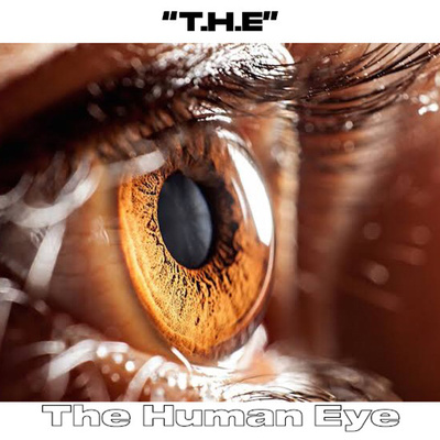 The Human Eye (THE)
