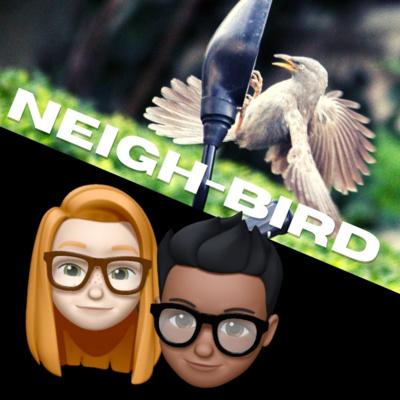 Introducing Neigh-bird