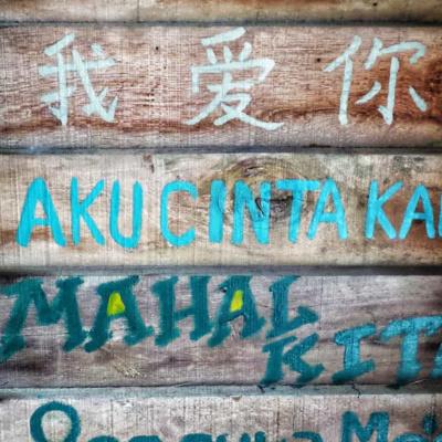 Evolución de las lenguas