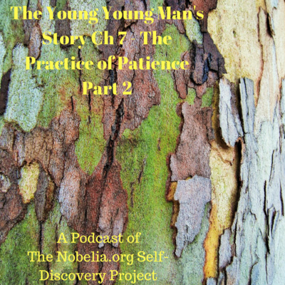 The Young Young Man's Story - Ch 7 The Practice of Patience Part 2