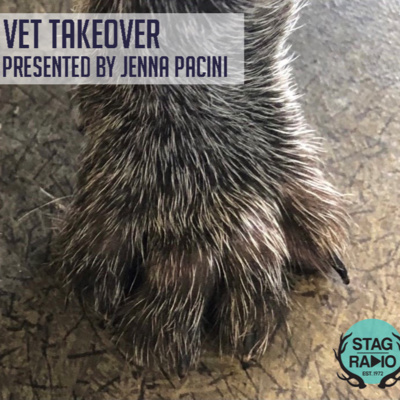 The Vet Takeover
