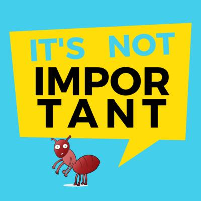 It's Not Important