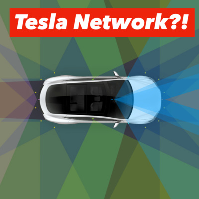 Investing In A Bright Future & Tesla w/ Ross Gerber by