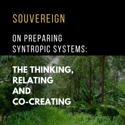 OBSERVING NATURE, PREPPING FOR SYNTROPIC SYSTEMS OF THINKING & RELATING