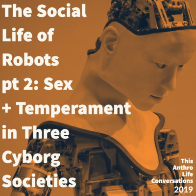 The Social Life of Robots, pt 2: Sex and Temperament in Three Cyborg Societies