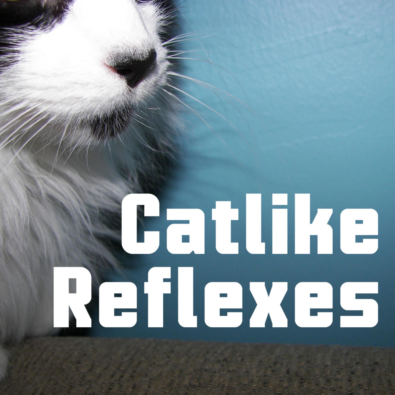Catlike Reflexes