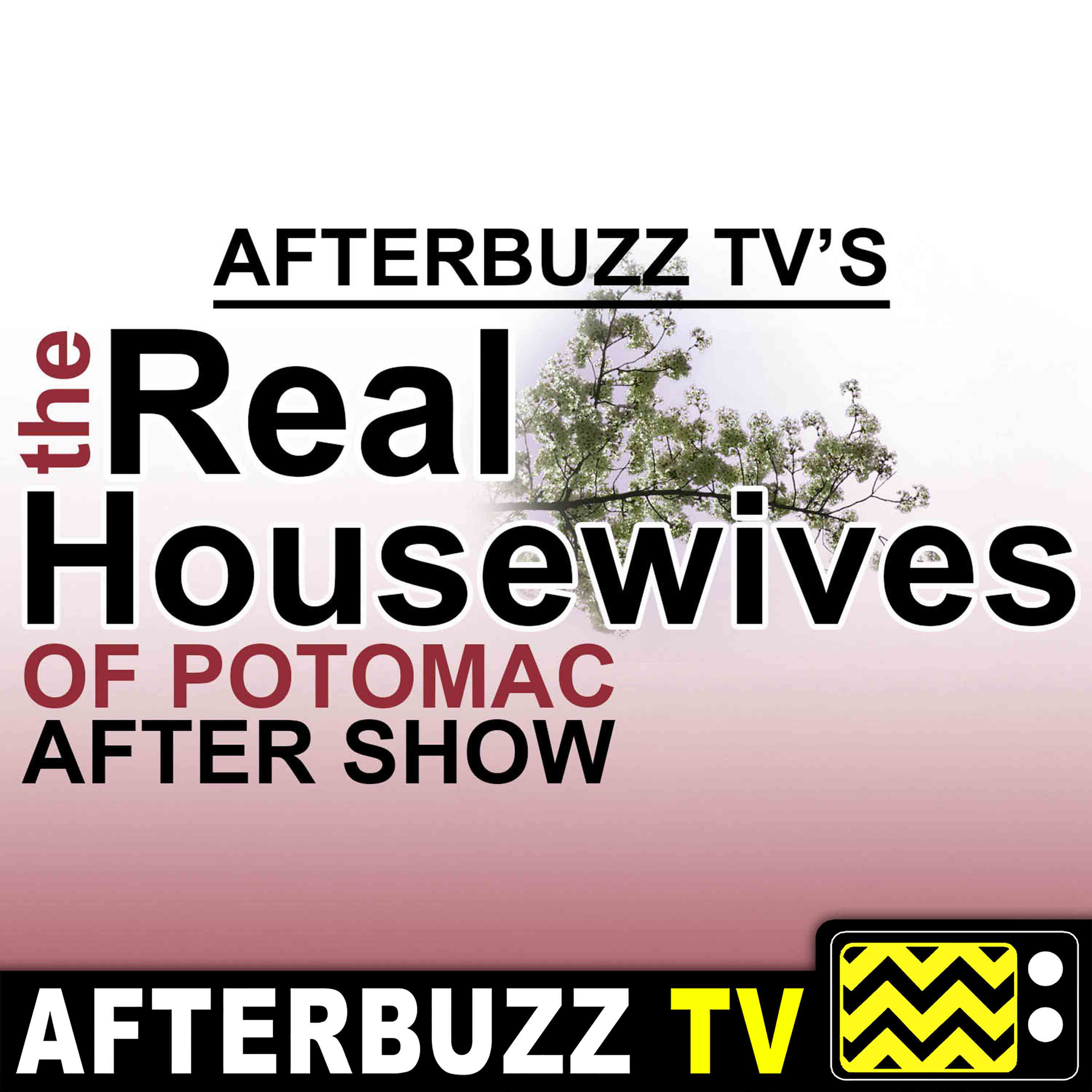 Real Housewives of Potomac | Interview w/ Gizelle Bryant | AfterBuzz