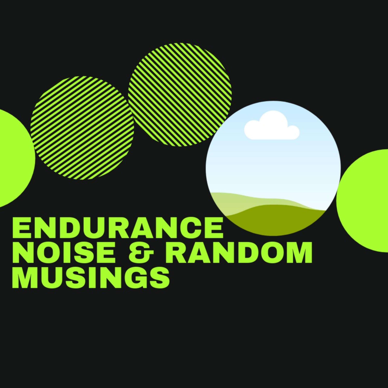 Endurance Noise & Random Musings