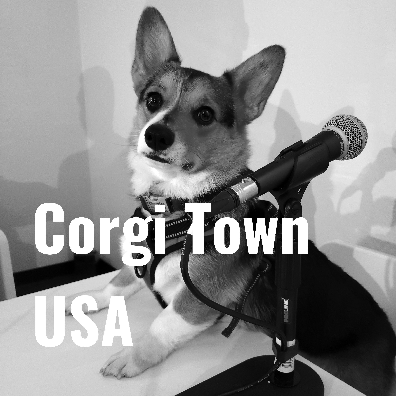 Corgi Town USA