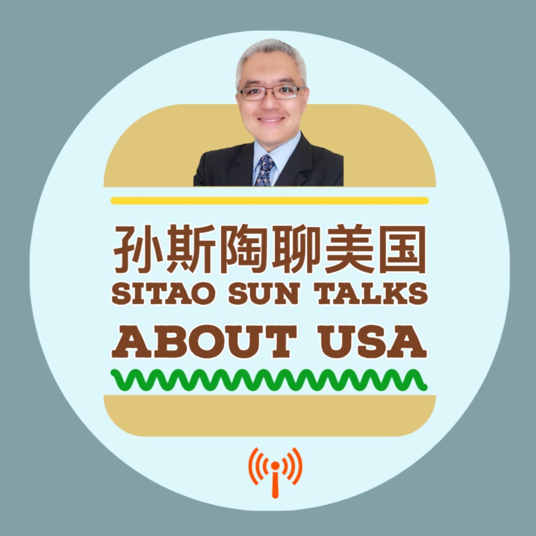 孙斯陶聊美国 Sitao Sun Talks about USA