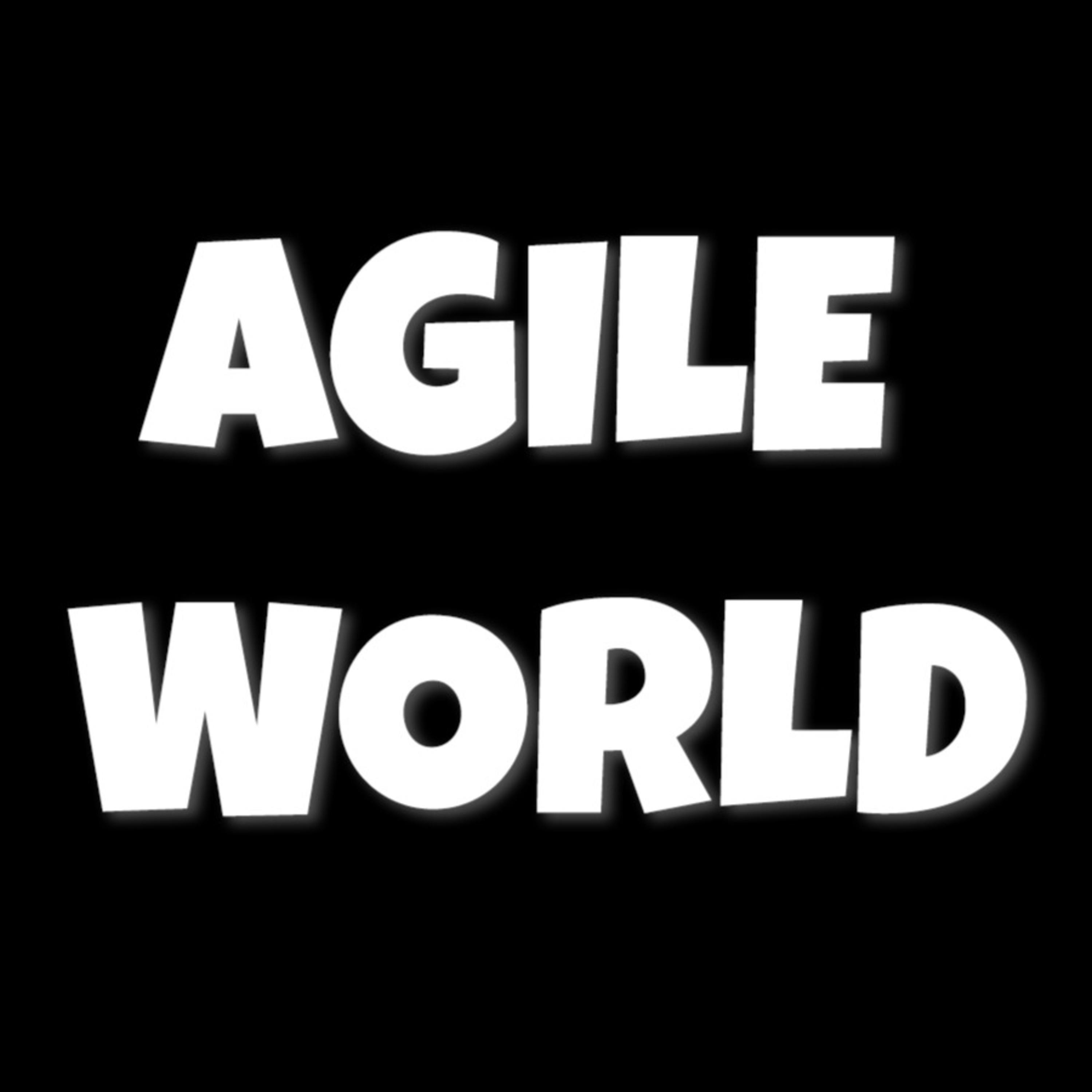 Agile an Unexpected Journey Author Interviews