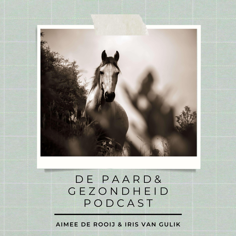 De Paard & Gezondheid podcast logo