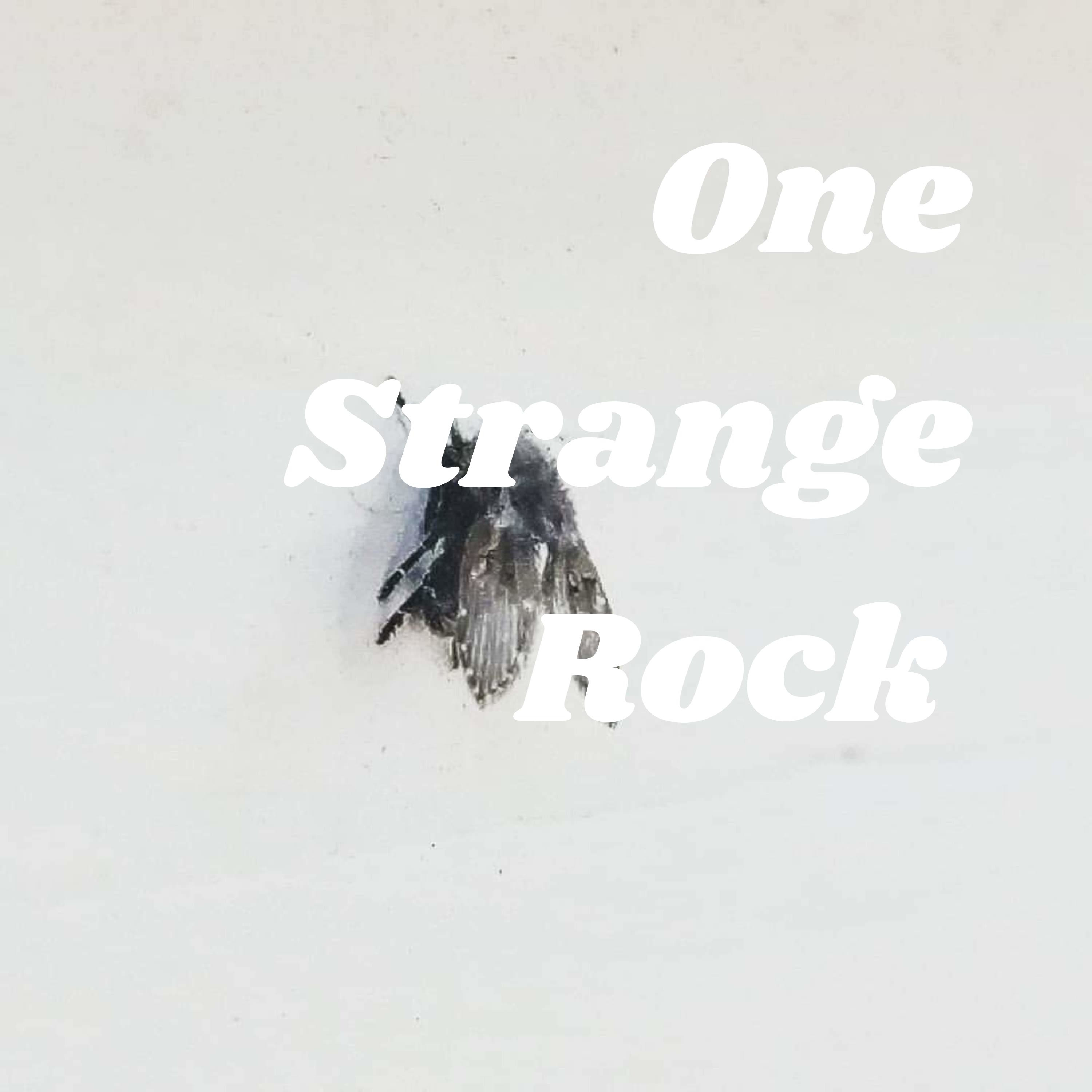 Ep. Who gives a fuck, this is a trailer! One Strange Rock, back, well never gone. Just brewing.