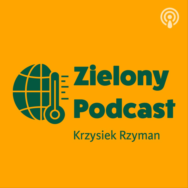 """Jak odbudować gospodarkę """"na zielono""""? Michał Hetmański, Fundacja Instrat"""