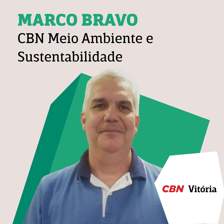 CBN Meio Ambiente e Sustentabilidade