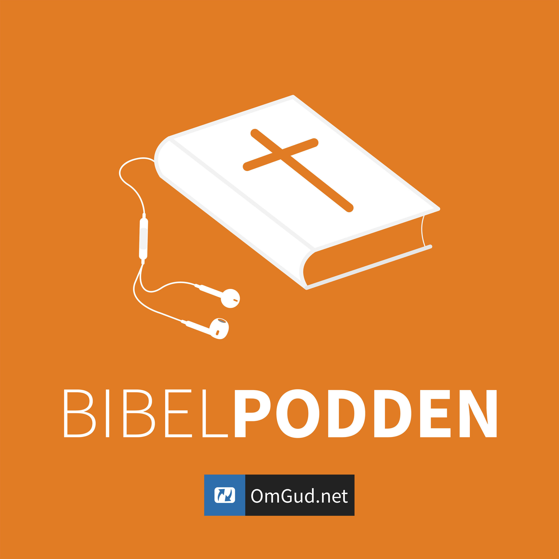 Bibelpod – Episode 19 – Evangeliet etter Lukas 2.43-46a