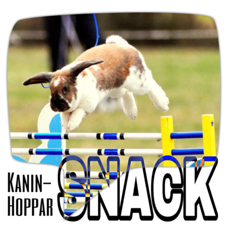 KaninHopparSNACK