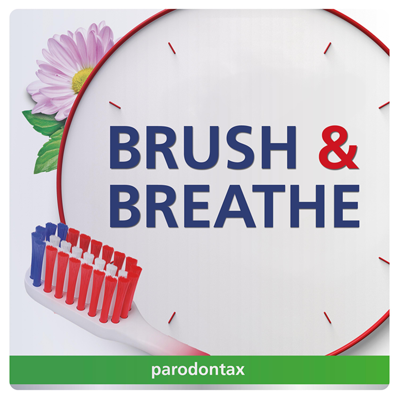 Brush & Breathe logo