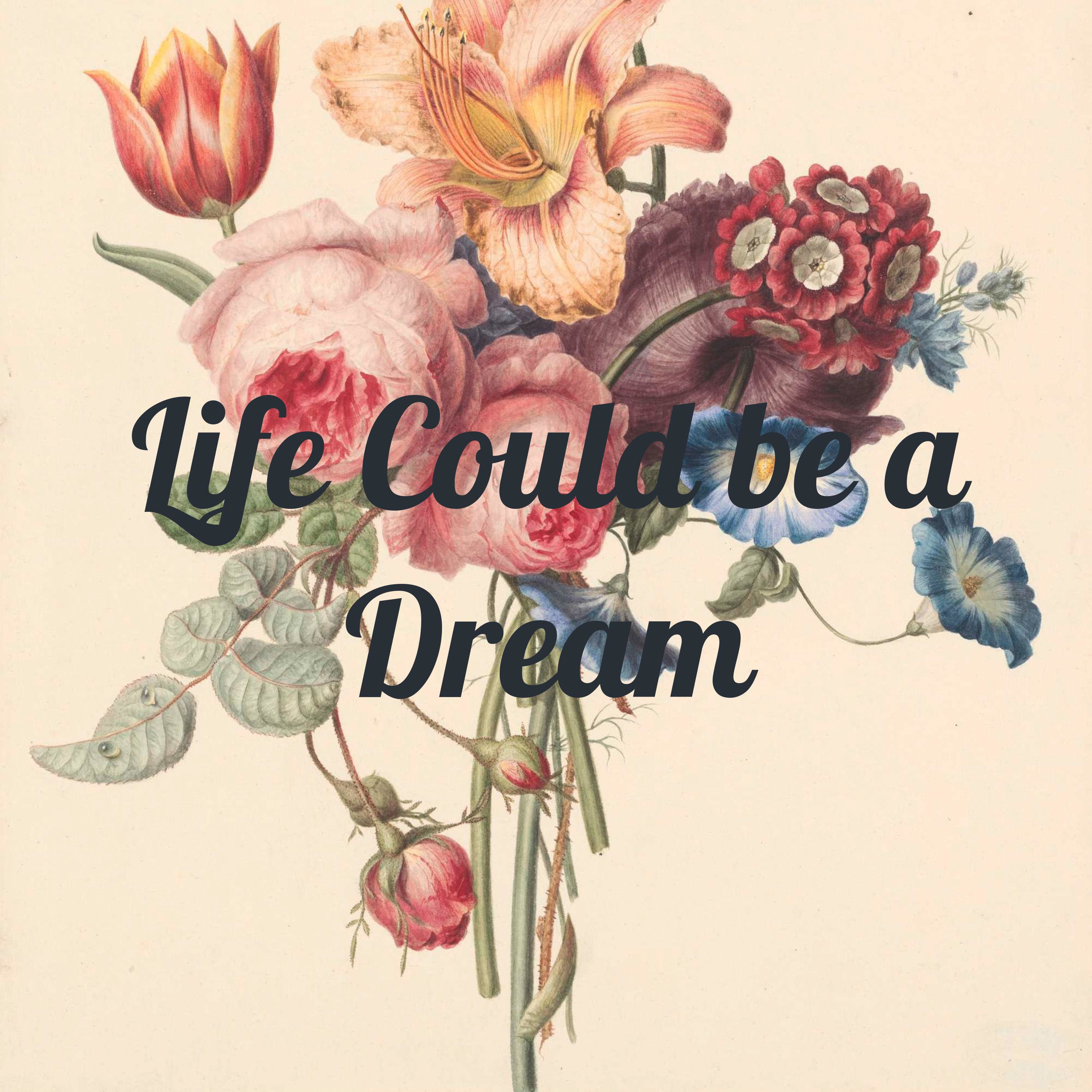 Life Could be a Dream