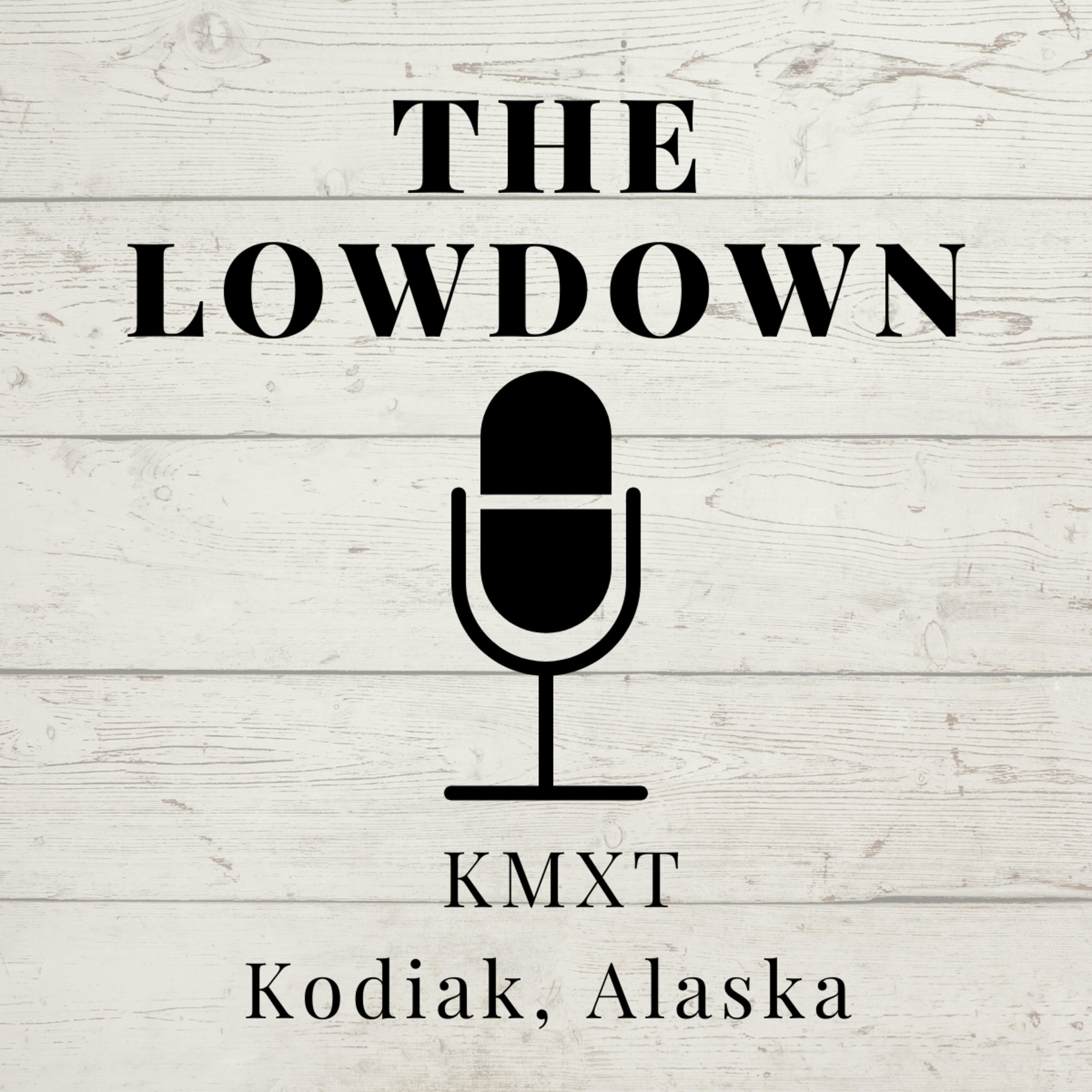 The Lowdown A Podcast On Anchor