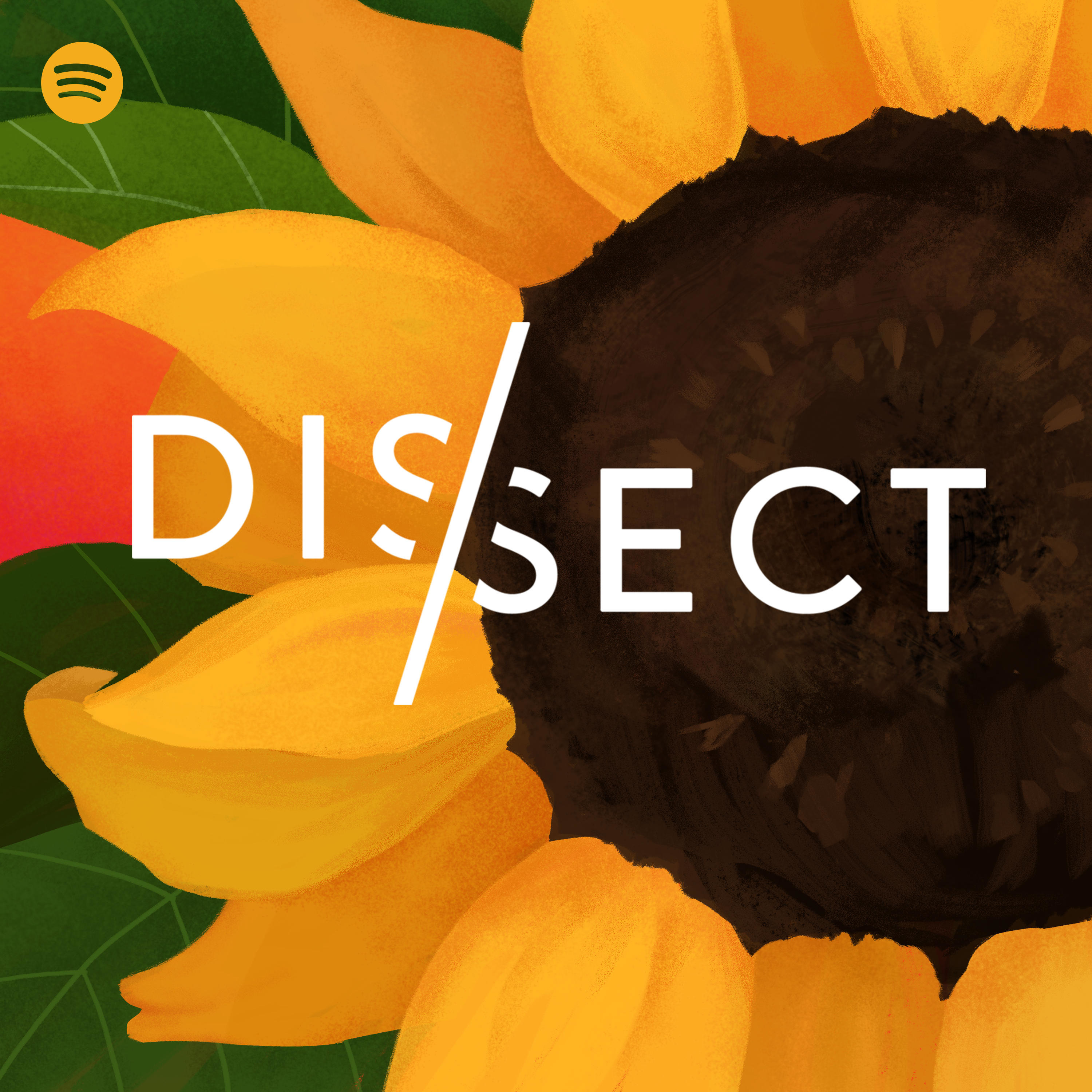 Dissect | Podbay