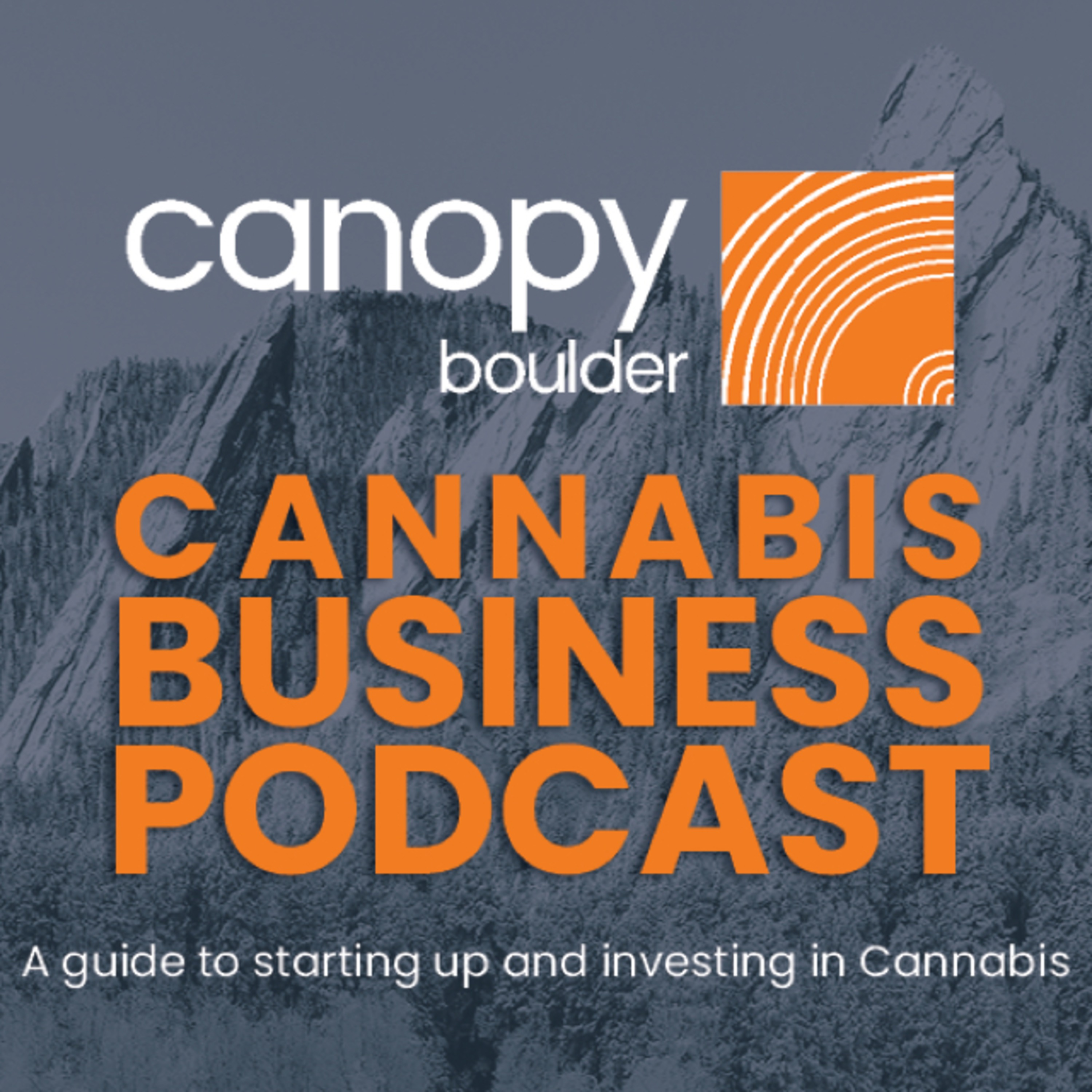 Cannabis picks and shovels: An ancillary operators' perspective