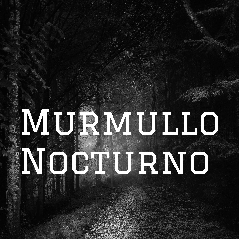 Murmullo Nocturno