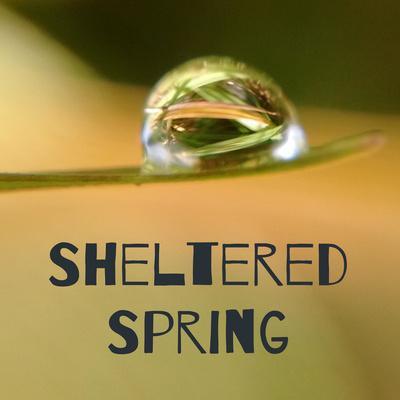 Sheltered Spring podcast logo