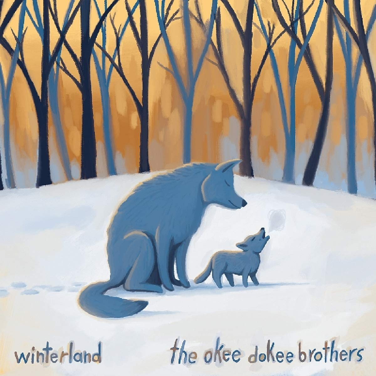 The Okee Dokee Brothers (Best Kids Music from The 62nd GRAMMY Awards)