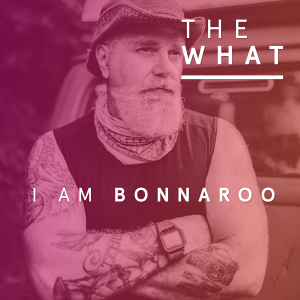 I Am Bonnaroo – The Work of David Bruce