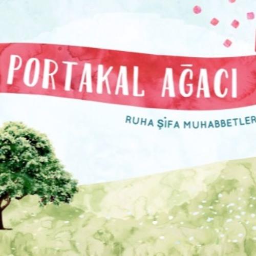 Bakara Suresi, 30-35