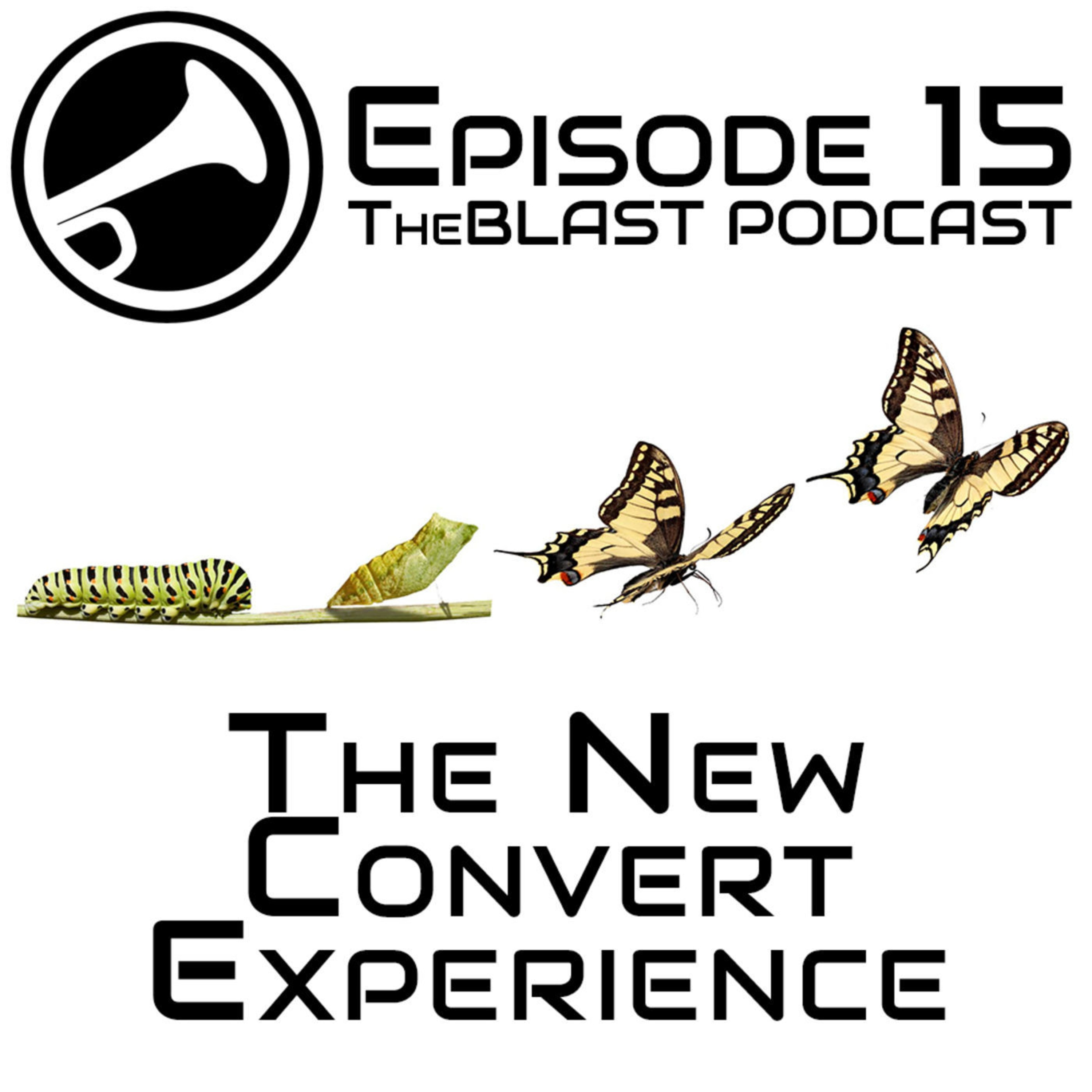 015 – The New Convert Experience: Don't Forget the Baby