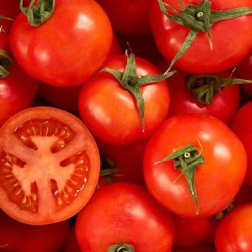 MCA Manual Do Cozinheiro Amador #7- Molho De Tomate
